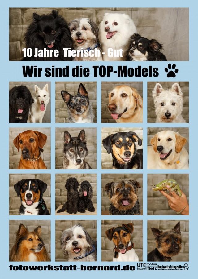 © fotowerkstatt-bernard.de